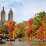 Travel: New York City on a November day